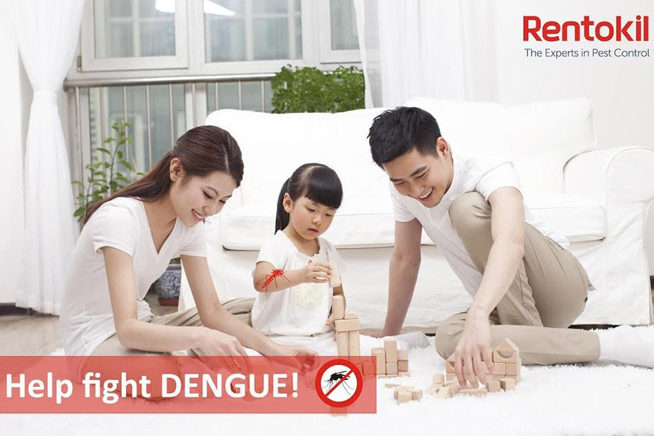 Be ready, prevent dengue!