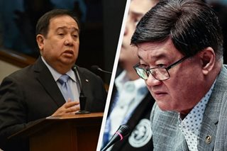 Gordon slams slow DOJ action over P6.4-B drug entry