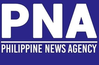 Andanar suspends uploading of photos on PNA website