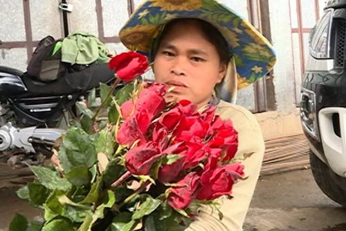 Will there be enough roses from La Trinidad on Valentine's Day?