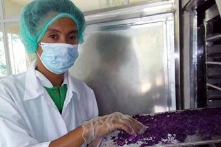 Pinoy-made powdered ube bags tech award in Singapore