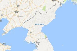 N. Korea says ballistic missile test successful: media