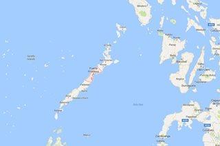 2 barangay sa Puerto Princesa, apektado ng mercury contamination