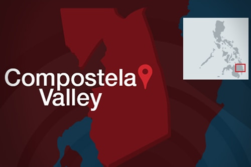 8 rebels, 1 soldier killed in Compostela Valley encounter