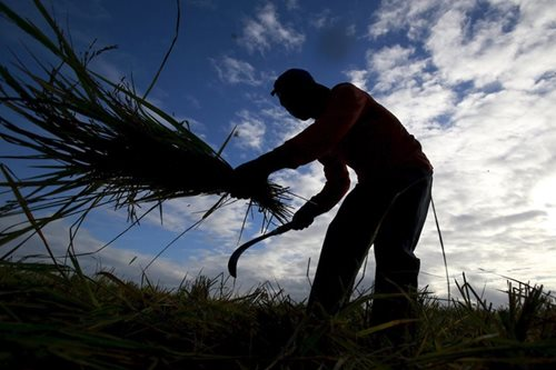 Duterte signs free irrigation law