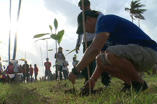 Tree planting sa subdivisions, isinusulong pangontra air pollution