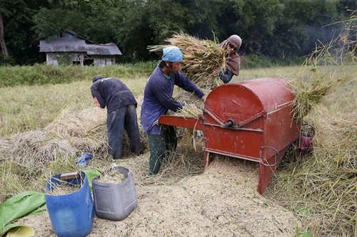4Ps beneficiaries to receive P600 monthly rice subsidy