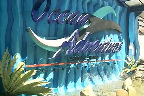 DOLE to probe Ocean Adventure armed takeover