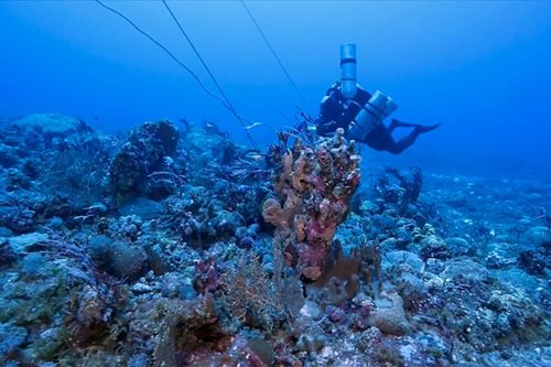 PH defers Holy Week expedition to Benham Rise