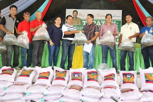 Agri dept releases 25,000 fingerlings in North Cotabato river