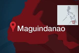3 patay sa anti-drug ops sa Maguindanao