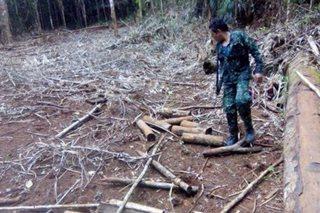 Abandonadong training camp ng armadong grupo, nadiskubre sa Palawan
