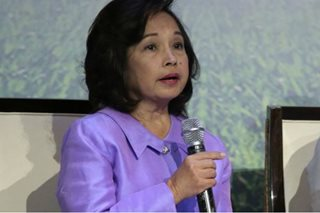 Arroyo eyes transportation body vs terror threats