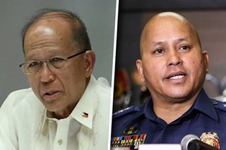Defense chief hits sending erring cops to Marawi
