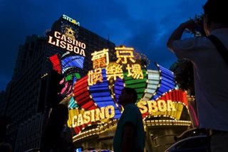 Macau's casino hub sees boom in endangered wildlife trade - report