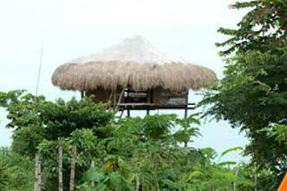 400 birdhouses sa Bolinao, Pangasinan, dinarayo