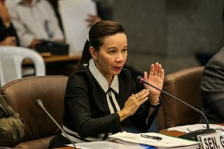 Poe wants airport execs to attend Senate probe on runway mishap