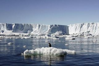 Global warming to blame for hottest day in Argentine Antarctica