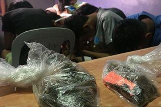7 menor de edad huli sa aktong gumagamit ng marijuana