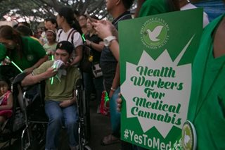 A push for Medical Cannabis