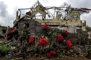 Red blooms provide respite in Marawi ruins