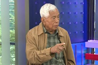 Federalism shift should have provisions vs political dynasties: Nene Pimentel