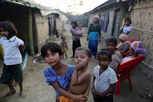 Bangladesh eyes sterilization to curb Rohingya population