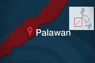4 NPA rebels surrender to military in Palawan