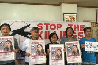 Lawmakers urge probe on killings of human rights workers in Negros