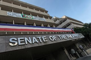 Senators back creation of Department of Culture