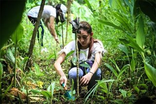 Concentrix PH sparks green initiative with tree planting event