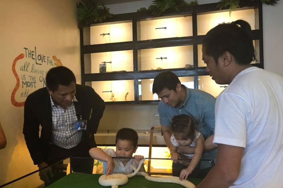 Live reptiles draw customers to Bacolod cafe | ABS-CBN News