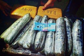 P240,000 halaga ng marijuana nasabat sa Pampanga; 3 suspek timbog