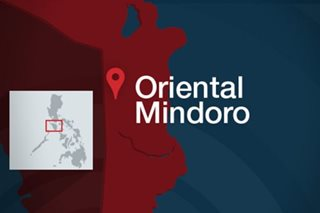 Travel authority, med cert di na kailangan sa pag-uwi sa Oriental Mindoro Dec. 9-15: Gov