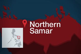 Albayalde sacks Northern Samar cops after alleged NPA ambush