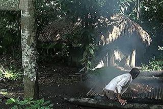 Ilang lumikas, napapabalik malapit sa Mayon para sa kabuhayan
