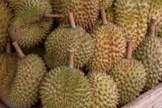 Thailand sends smelly durian into space