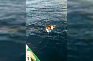 PANOORIN: Pagsagip sa pamilyang 3 araw nagpalutang sa dagat