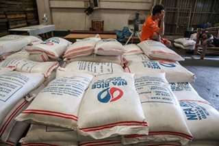 NFA needs extra rice imports for lean months: spokesman