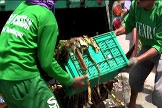 Daing ng DENR: 2,000 trak ng basura, nahahakot sa bansa kada araw