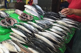 BFAR to import galunggong to address fish supply shortage