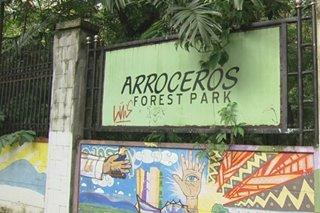 Arroceros Forest Park, nangangambang gawing isang gym