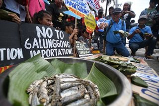 'No to galunggong imports'