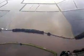 LOOK: Ompong swamps farmlands in Bulacan, Pampanga