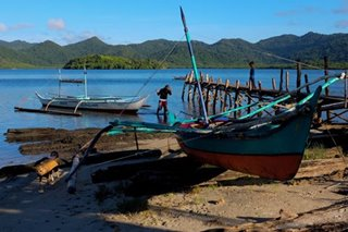 Palawan fisherman says he was 'pressured' to withdraw from writ of kalikasan plea