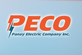 Panay Electric questions 'takeover' provisions in Razon-backed firm's franchise