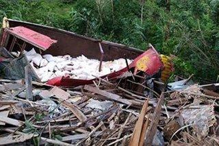 Trak nahulog sa bangin sa Davao; 1 sugatan
