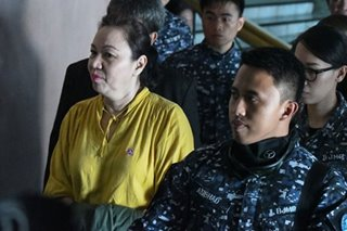 Napoles appeals plunder conviction