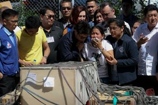 OFW killed in Kuwait comes home