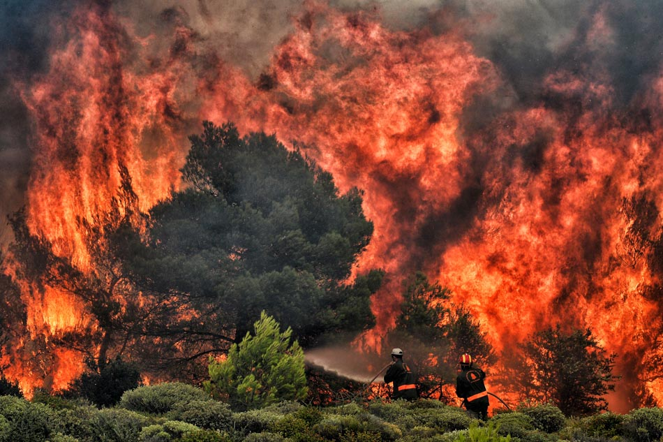 Wildfire in Greece claims 74 lives